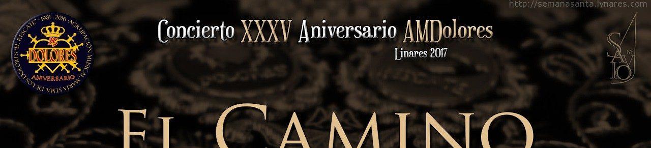 Concierto 35 Aniversario AMDolores | Linares 2017-by Savio